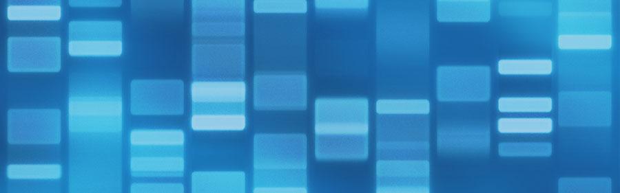 细胞因子小笔记之KGF